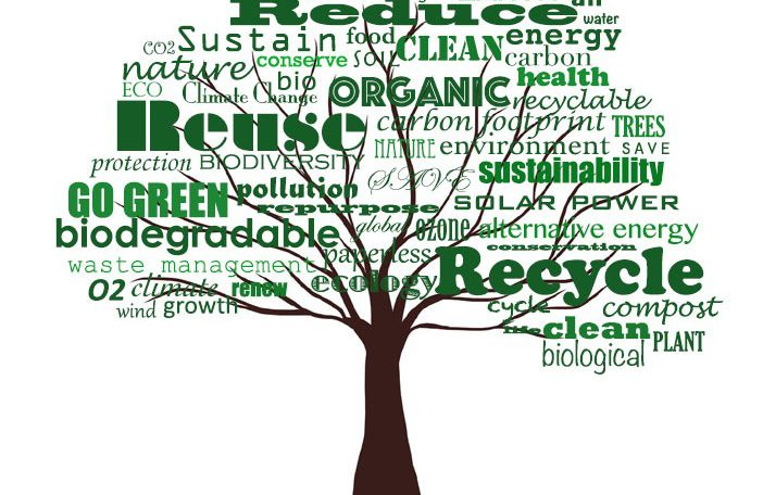 Innovative And Sustainable Solutions
